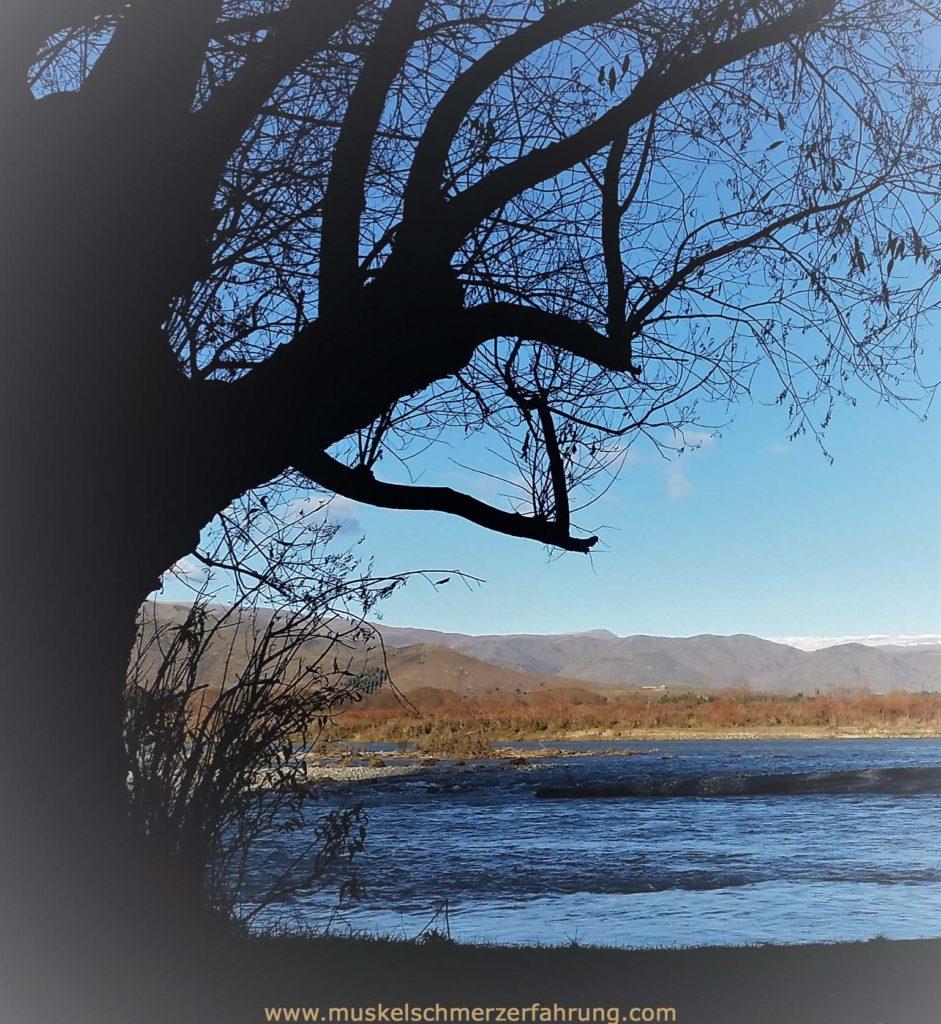 Baum Fluss Berge Muskelschmerzerfahrung.com